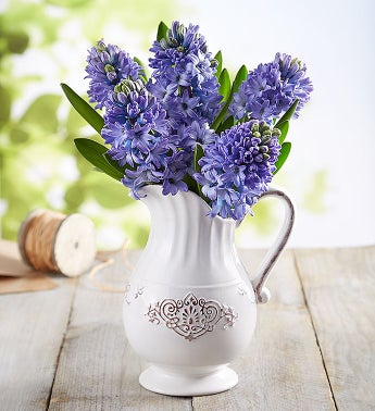 Fresh Market Blue Hyacinth Bouquet