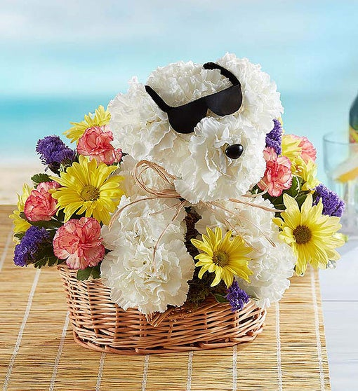 Sending a bouquet to your veterinary team will brighten their day.