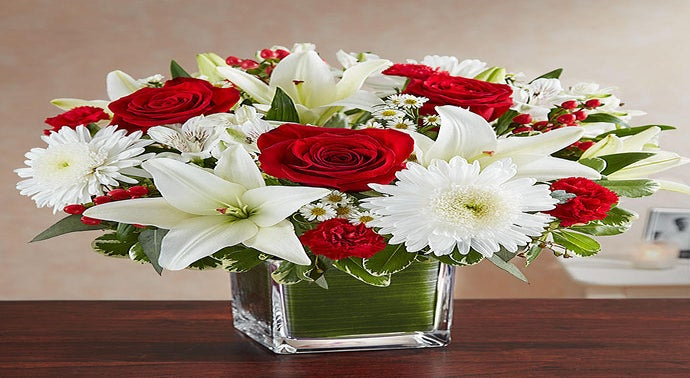 Complete Flowers in California Store Locator. List of all Flowers locations in California. Find hours of operation, street address, driving map, and contact information.