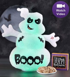 "Animated ""Spook the Ghost"" with Cheryl's Cookies"