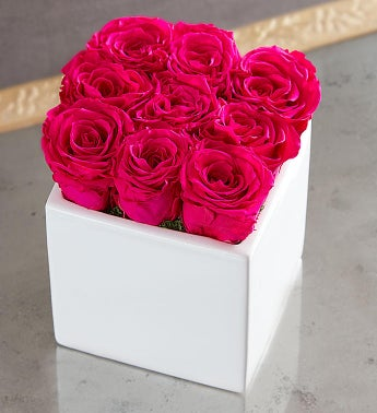 Preserved Pink Roses by Luxe Bloom® - Large