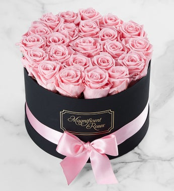 Magnificent Roses™ Preserved Pink Roses