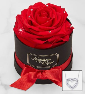 Magnificent Roses® Preserved Sparkle Rose and Necklace