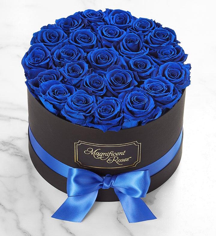 Magnificent Roses Preserved  Blue Velvet Roses