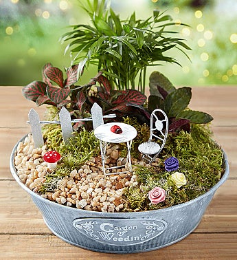 Enchanted Miniature Garden