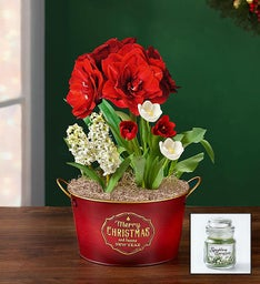 Christmas Bulb Garden + Free Candle