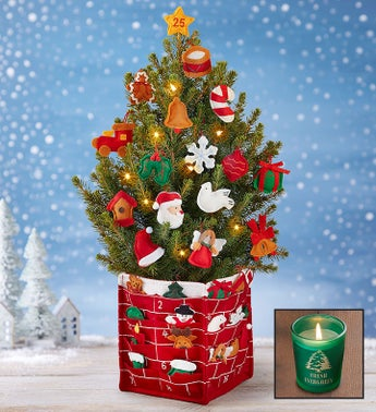 Countdown to Christmas Tree  Free Candle