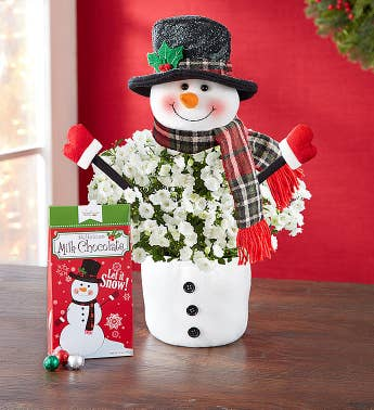 Frosty the Snow Plant with Chocolate