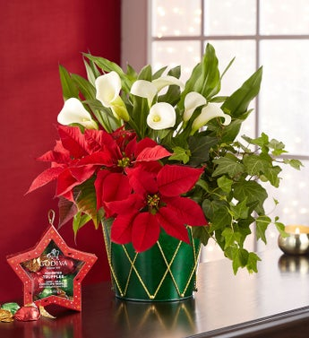Holiday Delights Garden Trio