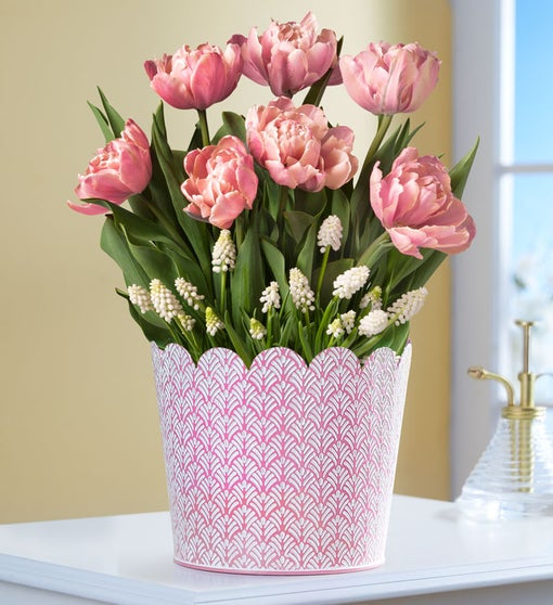 Simply Charming Bulb Tulip & Muscari Assortment