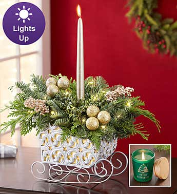 Classic Christmas Evergreens Sleigh + Free Candle