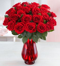Red Roses: 24 for $24