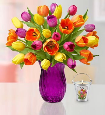 Assorted Tulips  Free Candle 40 Off