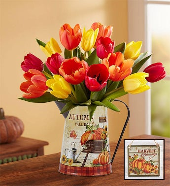 Assorted Fall Tulips