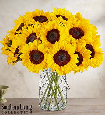 Sunflowers by Southern Living™