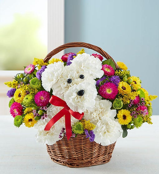 A Dog Able In A Basket 1800flowerscom 161097
