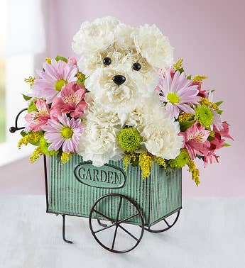 a dog able dog flowers gifts for dog lovers. Black Bedroom Furniture Sets. Home Design Ideas