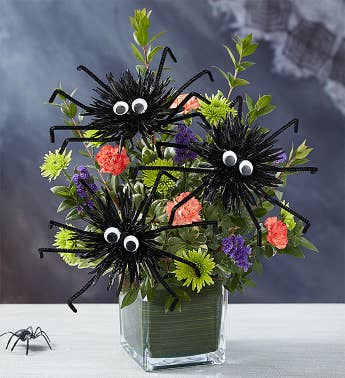 Spook-tacular Spiders