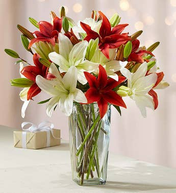 Holiday Lily Bouquet  Free Vase