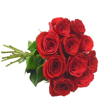 10 Colombian Red Roses