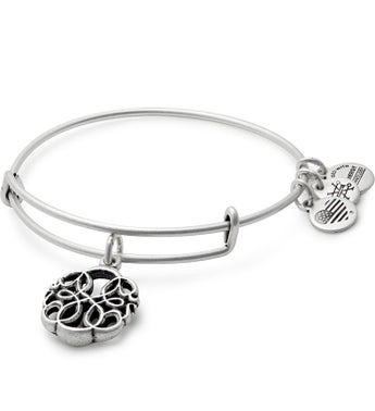 Alex  Ani Path of Life Bangle