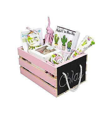 Personalized Baby Girl Gift Basket, Baby Cactus