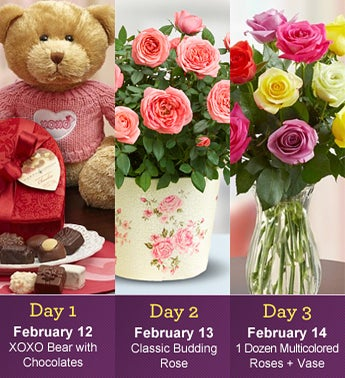 Three Days of Love