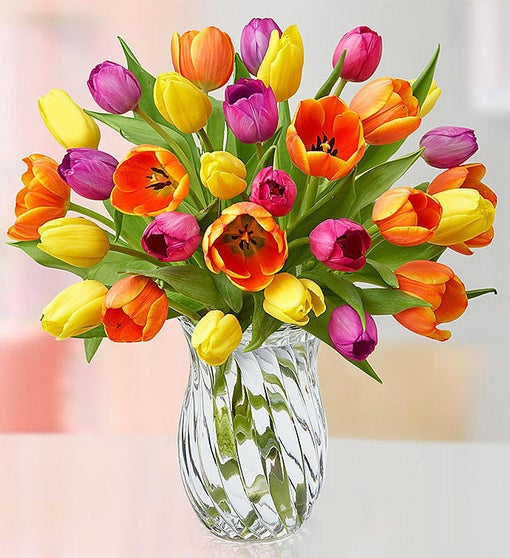 30 Assorted Tulips w/ Clear Vase