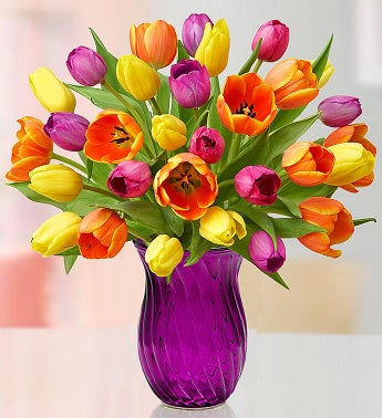 Assorted Tulip Bouquet  Free Shipping