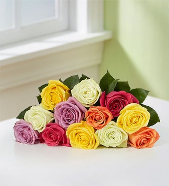 One Dozen Assorted Roses (Bouquet only)
