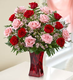Shades of Pink and Red Long Stem Roses