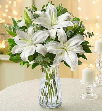 All White Lilies  Free Vase