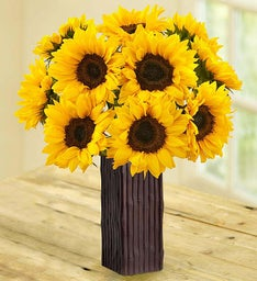 10 Stems of Sunflowers w/Vase