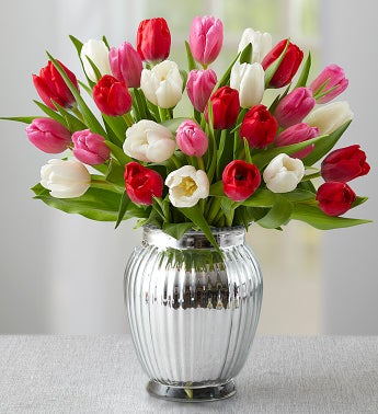 Pink, Red & White Tulips, 30 Stems