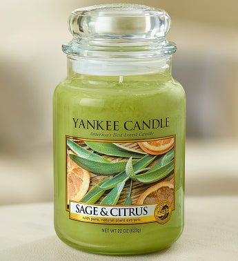 Sage and Citrus Yankee Candle®