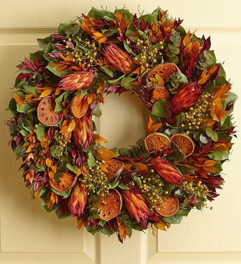 Preserved Tropical Protea Wreath - 22
