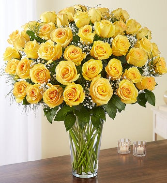 Ultimate elegance long stem yellow roses 1800flowers 98712 ultimate elegance long stem yellow roses mightylinksfo Gallery