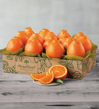 Cushman39s174 Florida HoneyBells - One Tray