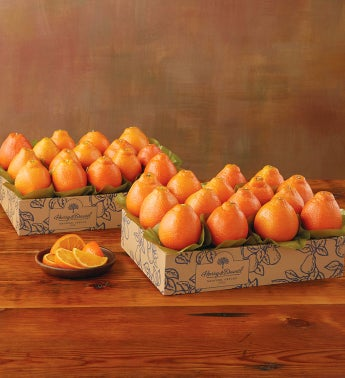 Western HoneyBells - Two Trays