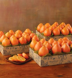 HoneyBells - Three Trays