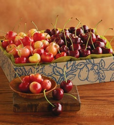 Cherry-Oh!® Cherries and Rainier Cherries