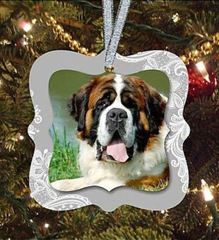 Pet In Our Life Ornament